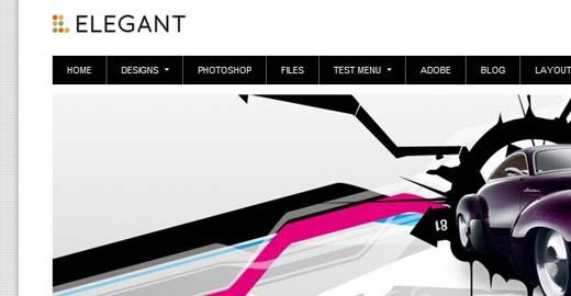 elegant-theme-wordpress