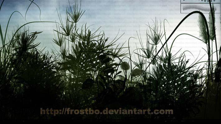 grass-e-vegetazione-brushes