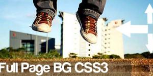 immagine-come-sfondo-sito-internet-fullbg-css3