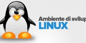 ambiente-sviluppo-linux