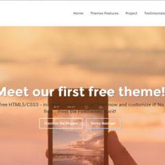 temi-html5-e-wordpress-free-nasce-il-progetto-firethemes-net